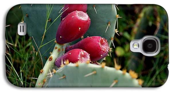 Prickly Pear Cactus Galaxy S4 Case by M E Wood