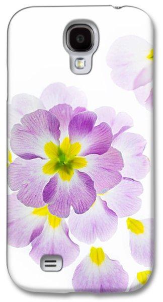 Primroses Galaxy S4 Cases - Primrose Petals 2 Galaxy S4 Case by Rebecca Cozart