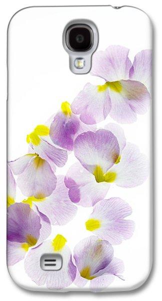 Primroses Galaxy S4 Cases - Primrose Petals 5 Galaxy S4 Case by Rebecca Cozart
