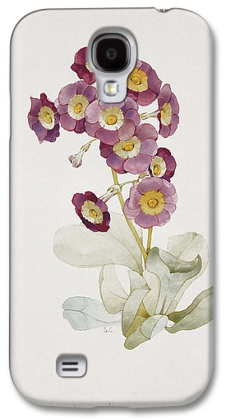 Botanical Galaxy S4 Cases - Primula Auricula Primrose Galaxy S4 Case by Sarah Creswell