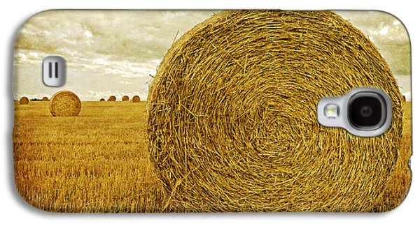 Hay Galaxy S4 Cases - Prince Edward Island Pastoral Farm Fields Galaxy S4 Case by Edward Fielding