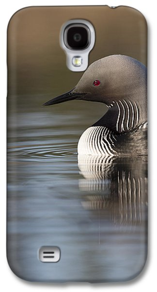 Profile Of A Pacific Loon Galaxy S4 Case by Tim Grams