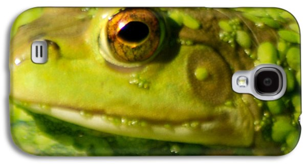 Invertebrates Mixed Media Galaxy S4 Cases - Profiling Frog Galaxy S4 Case by Optical Playground By MP Ray