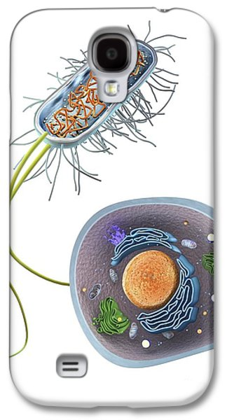 Prokaryote Galaxy S4 Cases - Prokaryote And Eukaryote Cells, Artwork Galaxy S4 Case by Gunilla Elam