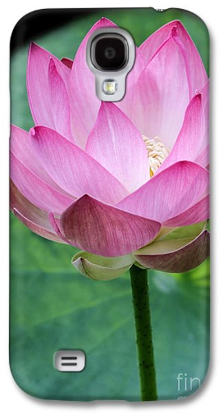 Florida Flowers Photographs Galaxy S4 Cases - Proud Pink Lotus Galaxy S4 Case by Sabrina L Ryan