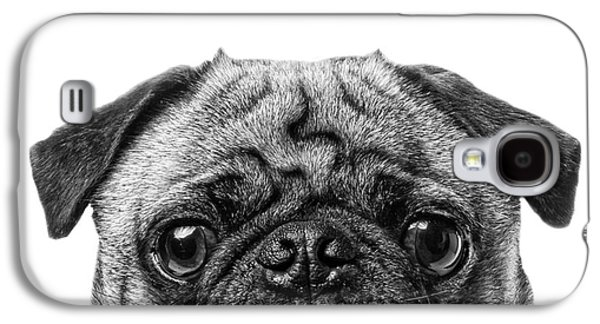 Graphic Photographs Galaxy S4 Cases - Pug Dog Square Format Galaxy S4 Case by Edward Fielding