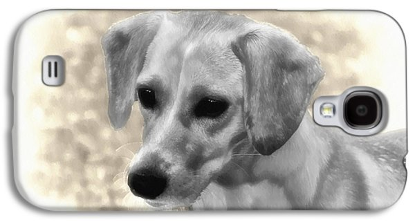 Puppy Digital Galaxy S4 Cases - Puggles Galaxy S4 Case by Bill Cannon