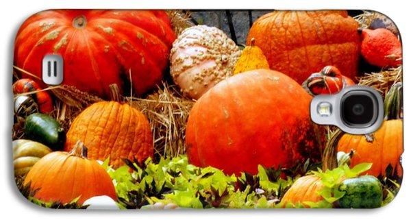 Harvest Time Galaxy S4 Cases - Pumpkin Harvest Galaxy S4 Case by Karen Wiles