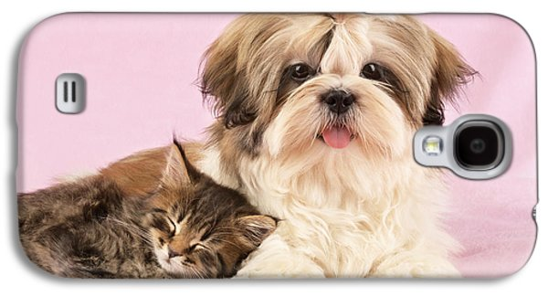Puppies Galaxy S4 Cases - Puppy And Kitten Galaxy S4 Case by Greg Cuddiford