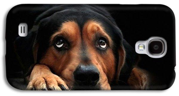 Puppy Dog Eyes Galaxy S4 Case by Christina Rollo