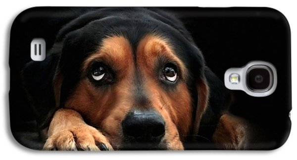 Puppies Galaxy S4 Cases - Puppy Dog Eyes Galaxy S4 Case by Christina Rollo