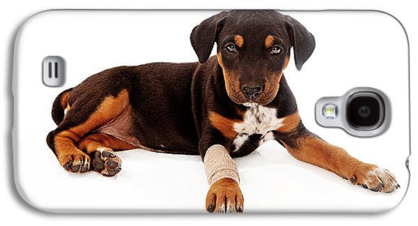 Groom Galaxy S4 Cases - Puppy Laying With Injury Galaxy S4 Case by Susan  Schmitz