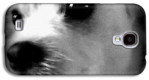 Dog Framed Prints Digital Art Galaxy S4 Cases - Puppy Love 1 Galaxy S4 Case by Sheri McLeroy