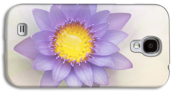 Healing Posters Galaxy S4 Cases - Purity and Grace Galaxy S4 Case by Sharon Mau