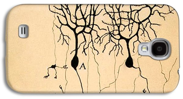 Purkinje Cells By Cajal 1899 Galaxy S4 Case by Science Source