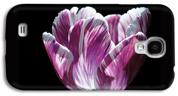 Purple And White Marbled Tulip Galaxy S4 Case by Rona Black