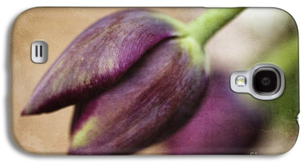 Spring Greening Galaxy S4 Cases - Purple Bliss Galaxy S4 Case by Terry Rowe