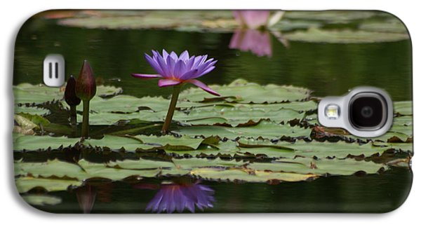 Pinks And Purple Petals Photographs Galaxy S4 Cases - Purple Blossoms Floating Galaxy S4 Case by Patricia Twardzik
