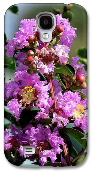 Plant Galaxy S4 Cases - Purple crape myrtle Galaxy S4 Case by Zina Stromberg