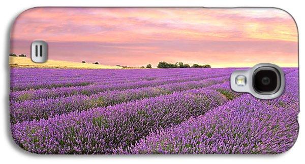Harvest Time Galaxy S4 Cases - Purple Haze - Lavender Field at Sunrise Galaxy S4 Case by Gill Billington