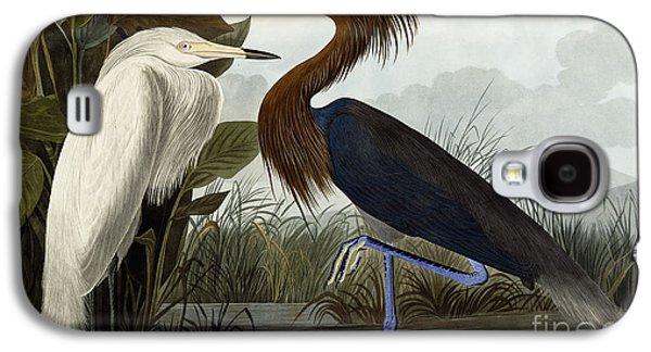 Purple Drawings Galaxy S4 Cases - Purple Heron Galaxy S4 Case by John James Audubon