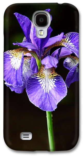Flower Design Photographs Galaxy S4 Cases - Purple Iris Galaxy S4 Case by Adam Romanowicz