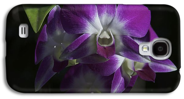 Orsillo Galaxy S4 Cases - Purple Orchids Front View Galaxy S4 Case by Stephen Orsillo