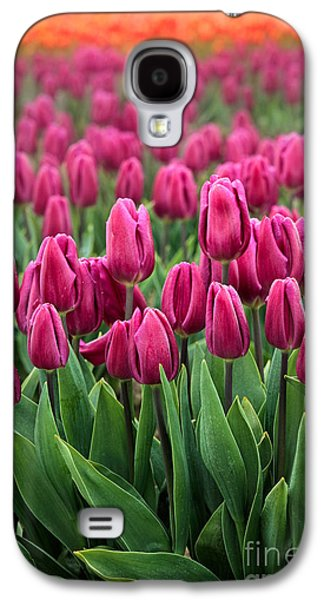 Agronomy Galaxy S4 Cases - Purple Tulips Galaxy S4 Case by Inge Johnsson