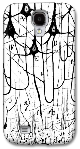 Healthy Galaxy S4 Cases - Pyramidal Cells Illustrated By Cajal Galaxy S4 Case by Science Source