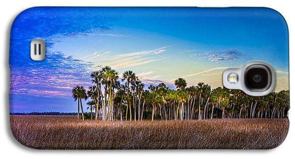 Park Scene Galaxy S4 Cases - Quailty Time Galaxy S4 Case by Marvin Spates