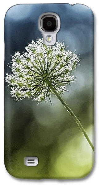 Duo Tone Galaxy S4 Cases - Queen Annes Lace Galaxy S4 Case by Carolyn Derstine