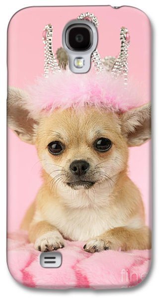 Puppy Digital Art Galaxy S4 Cases - Queen Chihuahua Galaxy S4 Case by Greg Cuddiford