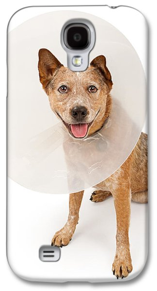 Cattle Dog Galaxy S4 Cases - Queensland Heeler Dog Wearing A Cone Galaxy S4 Case by Susan  Schmitz