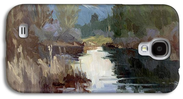 Waterscape Paintings Galaxy S4 Cases - Quiet Reflections at Harrys Pond Galaxy S4 Case by Diane McClary