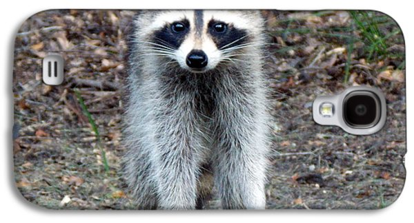 Raccoon Digital Art Galaxy S4 Cases - Raccoon Stare Down Galaxy S4 Case by Sheri McLeroy