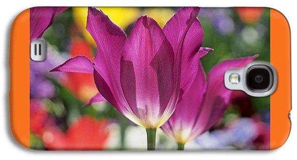 Radiant Purple Tulips Galaxy S4 Case by Rona Black