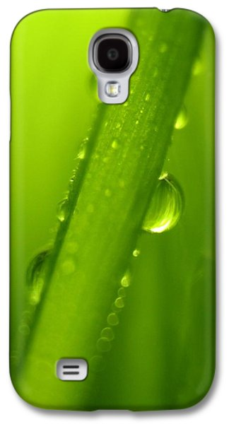 A Sunny Morning Galaxy S4 Cases - Raindrops on a Blade of Grass Galaxy S4 Case by Mariola Bitner