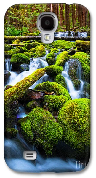 Landscapes Photographs Galaxy S4 Cases - Rainforest Magic Galaxy S4 Case by Inge Johnsson