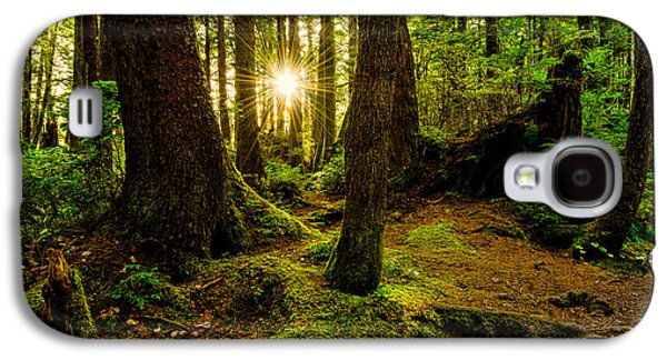 Light Galaxy S4 Cases - Rainforest Path Galaxy S4 Case by Chad Dutson