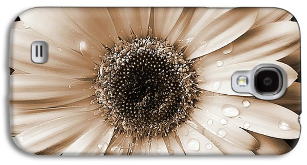 Raindrops On Gerber Daisy Sepia Galaxy S4 Case by Jennie Marie Schell