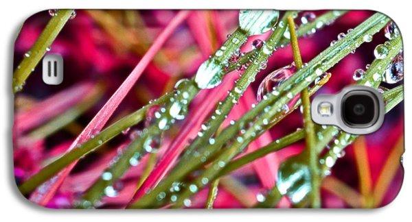 Rainy Day Photographs Galaxy S4 Cases - Raindrops Galaxy S4 Case by Marianna Mills
