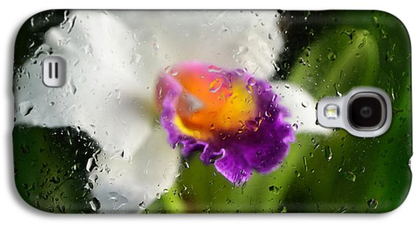 Business Galaxy S4 Cases - Rainy Day Orchid - Botanical Art By Sharon Cummings Galaxy S4 Case by Sharon Cummings