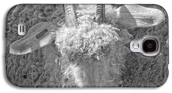 Sheep Digital Art Galaxy S4 Cases - Ram Sheep On Farm In Maine Galaxy S4 Case by Keith Webber Jr