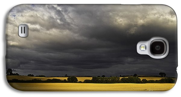 Pasture Scenes Photographs Galaxy S4 Cases - Rapefield Under Dark Sky Galaxy S4 Case by Heiko Koehrer-Wagner