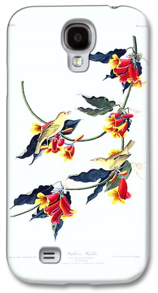 Architecture Acrylic Prints Galaxy S4 Cases - Rathbone Warbler Galaxy S4 Case by Celestial Images