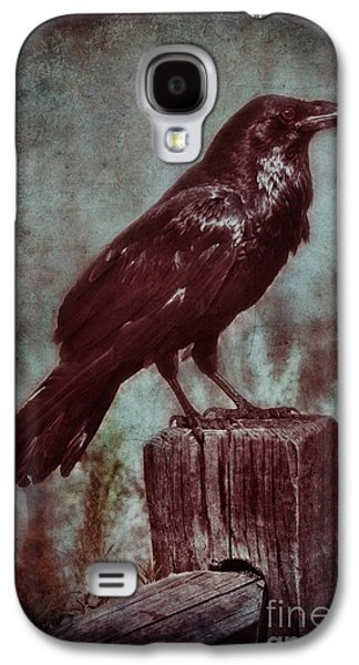 Old Fence Posts Galaxy S4 Cases - Raven Perched on a Post Galaxy S4 Case by Jill Battaglia