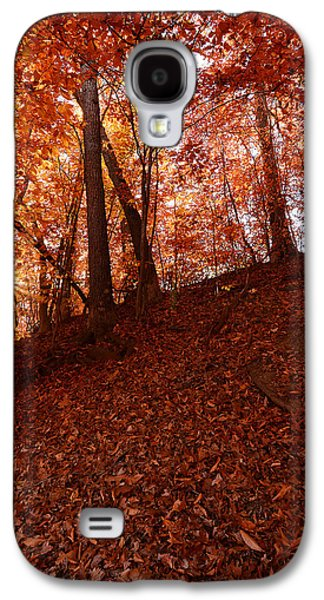 Reds Of Autumn Galaxy S4 Cases - Rays Of Leaves Galaxy S4 Case by Lourry Legarde