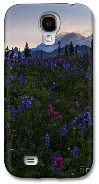 Sunbeams Galaxy S4 Cases - Rays over Rainier Galaxy S4 Case by Mike  Dawson