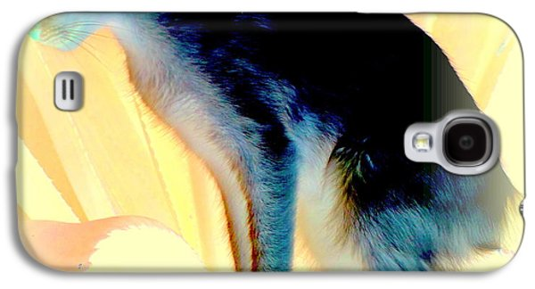 Implication Photographs Galaxy S4 Cases - Ready To Jump Galaxy S4 Case by Hilde Widerberg