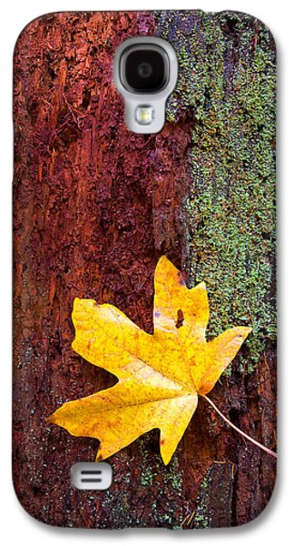 Autumn Leaf Galaxy S4 Cases - Reclamation Galaxy S4 Case by Mike  Dawson